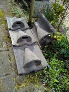 Gierzwaluw dakpan