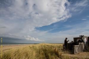 Vogelexcursie: Maasvlakte